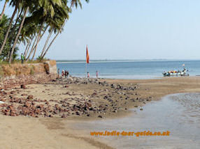 A beautiful beach on Goa, India