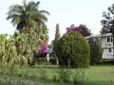 Beautiful gardens to relax in at Sahelion, Udaipur, India.